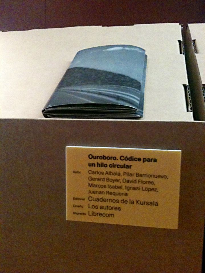 Libro ouroboro codice hilo circular